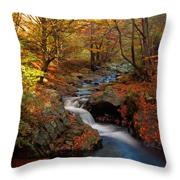 Old River Throw Pillow