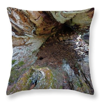 Throw Pillow featuring the photograph Old Root Abstract #1 by Sandra Updyke