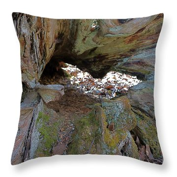 Throw Pillow featuring the photograph Old Root Abstract #2 by Sandra Updyke