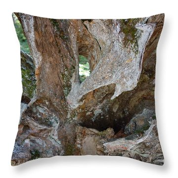 Throw Pillow featuring the photograph Old Root Abstract #3 by Sandra Updyke