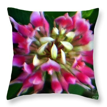 Old Rose Explosive Wildflower Throw Pillow