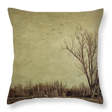 Old Rural Farmhouse With Grunge Feeling Throw Pillow by Sandra Cunningham