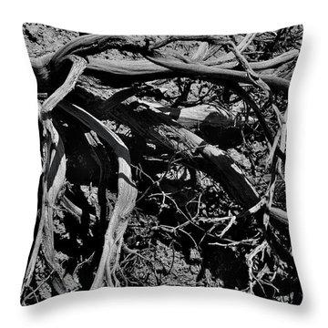 Old Sagebrush Throw Pillow