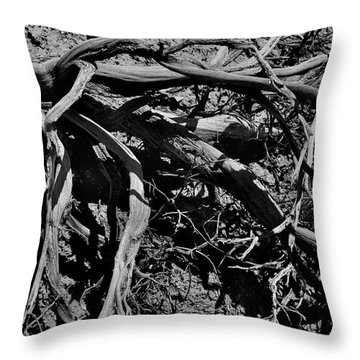 Old Sagebrush Throw Pillow