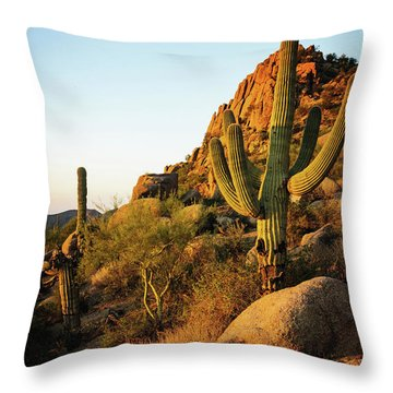 Old Saguaro Cactus Throw Pillow