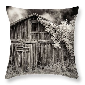 Throw Pillow featuring the photograph Old Shed In Sepia by Greg Nyquist