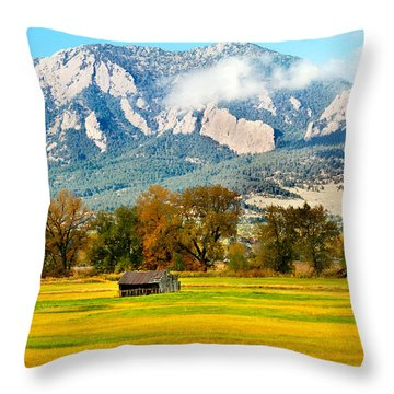 Old Shed Throw Pillow by Marilyn Hunt