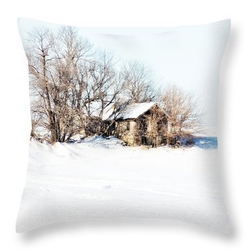 Throw Pillow featuring the photograph Old  Stone House Milford by Julie Hamilton