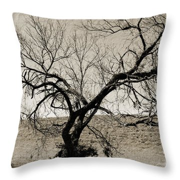 Old Texas Frontier  Throw Pillow