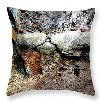 Old Threshold Paint Throw Pillow