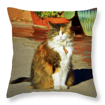 Throw Pillow featuring the photograph Old Town Cat by Nikolyn McDonald