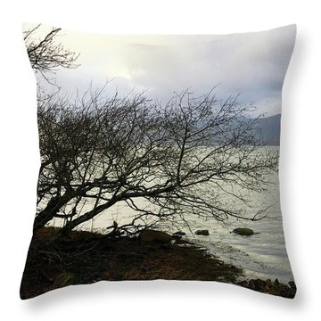 Throw Pillow featuring the photograph Old Tree By The Bay by Chriss Pagani
