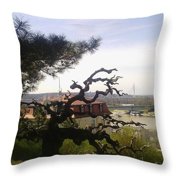 Old Tree In The Kalemegdan Park In Belgrade Throw Pillow