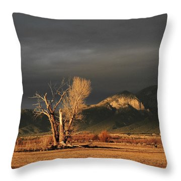 Sunset On The Old Cottonwood Throw Pillow
