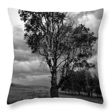 Old Tree, Lost Trail Wildlife Refuge Throw Pillow
