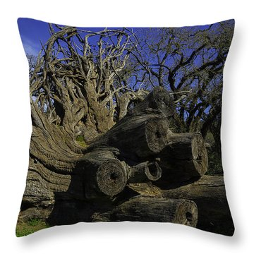 Old Tree Roots Throw Pillow