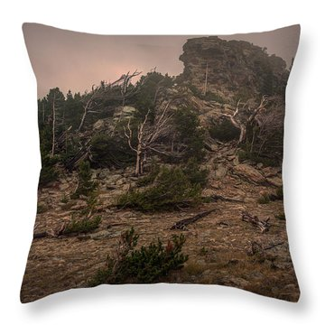 Old Trees Reaching Through The Fog Throw Pillow
