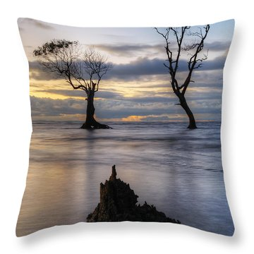 Old Trees Throw Pillow by Robert Charity