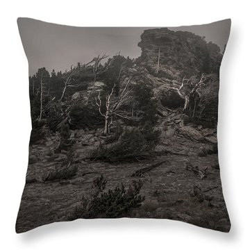 Old Tress Reaching Through The Fog Bw Throw Pillow
