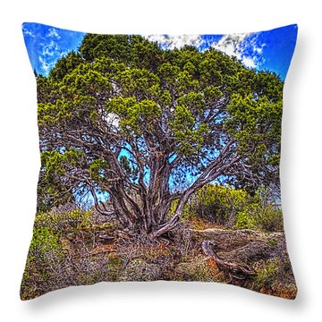 Old Utah Juniper Throw Pillow