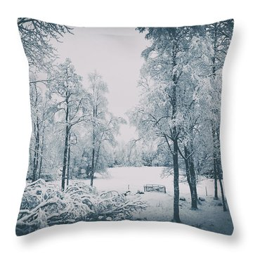 Old Vintage Winter Landscape Throw Pillow