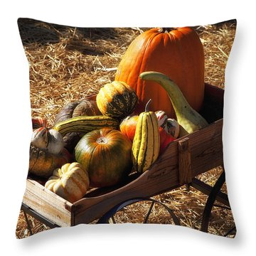 Old Wagon Full Of Autumn Fruit Throw Pillow by Garry Gay