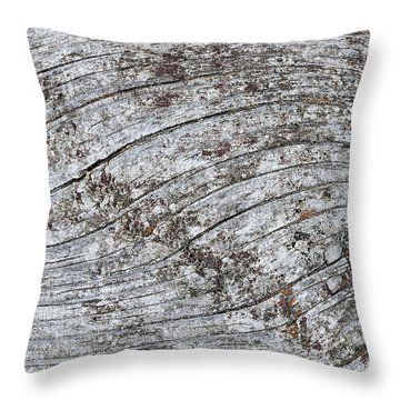 Old Weathered Wood Abstract Throw Pillow