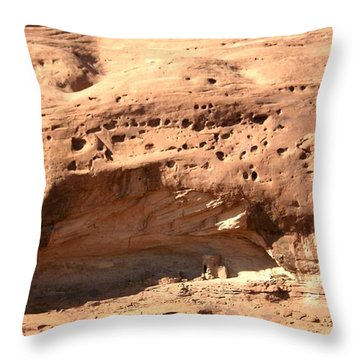 Old West Condo Throw Pillow by Fred Wilson