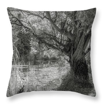 Old Willow Throw Pillow