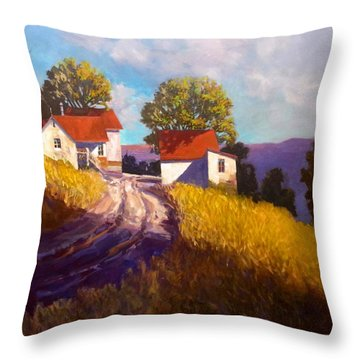 Old Willy's Barn Throw Pillow