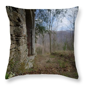 Old Woods Iron Gate With Flowers And Mountains Throw Pillow