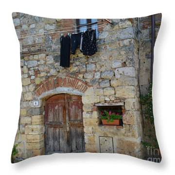 Old World Door Throw Pillow