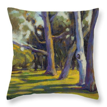 Older And Wiser 4 Throw Pillow