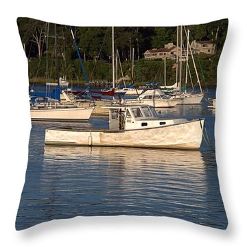 Throw Pillow featuring the photograph Ole Boy by  Newwwman