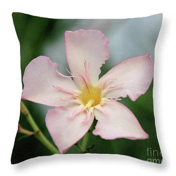 Oleander Agnes Campbell  Throw Pillow