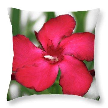 Oleander Blood-red Velvet 1 Throw Pillow