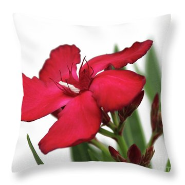 Oleander Blood-red Velvet 2 Throw Pillow