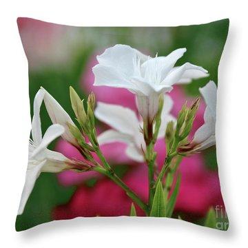 Oleander Casablanca 1 Throw Pillow