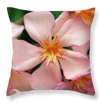 Oleander Dr. Ragioneri 1 Throw Pillow