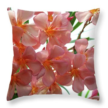 Oleander Dr. Ragioneri 4 Throw Pillow