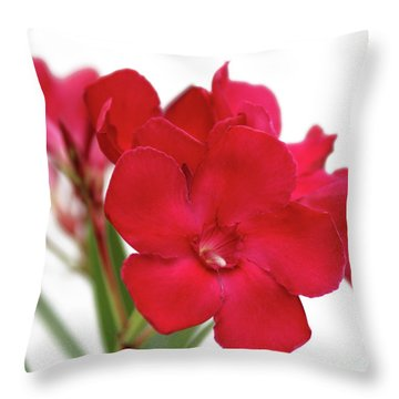 Oleander Emile Sahut 1 Throw Pillow