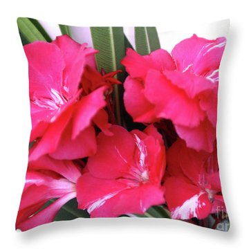 Oleander Geant Des Batailles 1 Throw Pillow