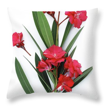 Oleander Geant Des Batailles 2 Throw Pillow