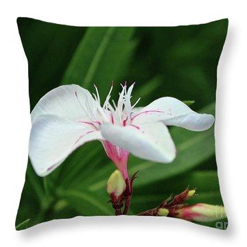 Oleander Harriet Newding  1 Throw Pillow