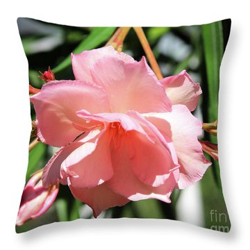 Oleander Mrs. Roeding 3 Throw Pillow