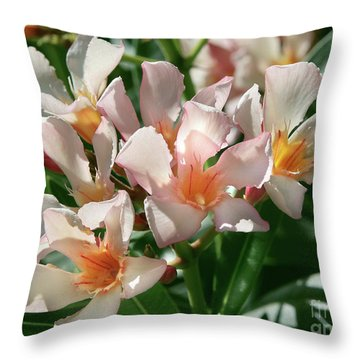 Oleander Petite Salmon 1 Throw Pillow