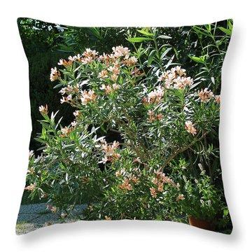 Oleander Petite Salmon 4 Throw Pillow