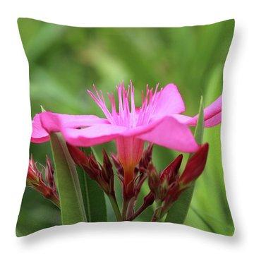 Oleander Professor Parlatore 1 Throw Pillow