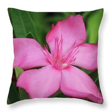 Oleander Professor Parlatore 2 Throw Pillow