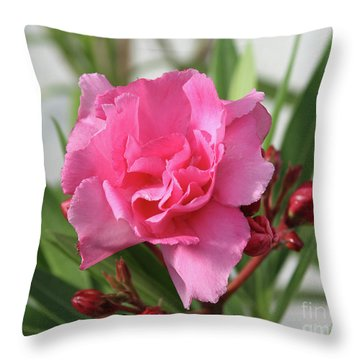 Oleander Splendens Giganteum 1 Throw Pillow